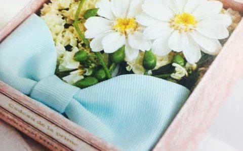プリザの新しいお花♡ジニア